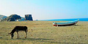 Beach, Targha - By Team nhəḍṛu